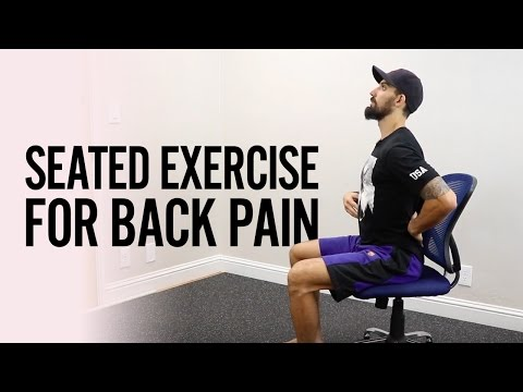 How to FIX Low BACK PAIN from Sitting with a seated exercise