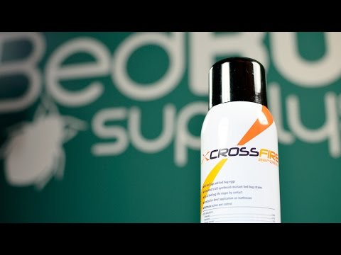 CrossFire Aerosol Bed Bug Spray Review