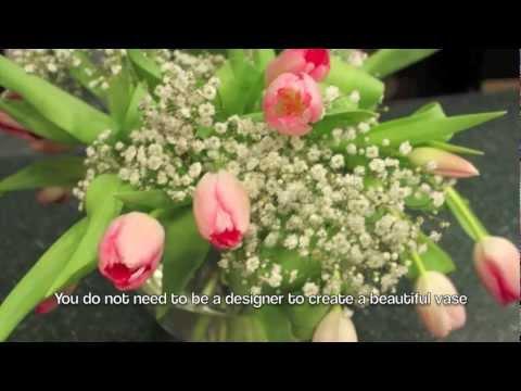 ShopRite Fresh Cut Tulip Care