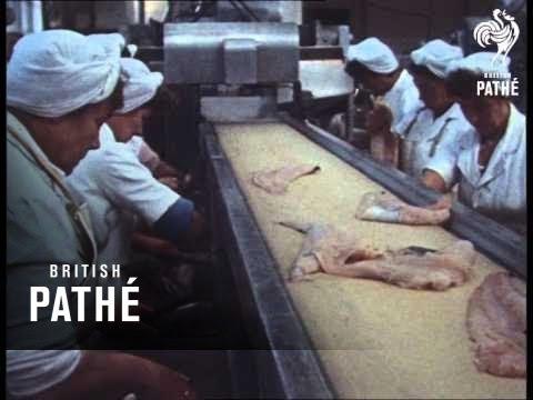 Fish Fingers (1972)