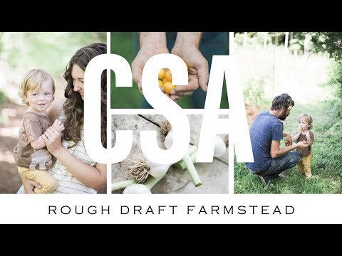 FIVE REASONS TO JOIN A VEGETABLE CSA!