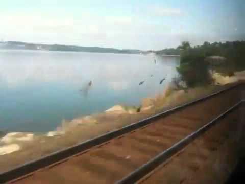 Amtrak Olympia to Seattle