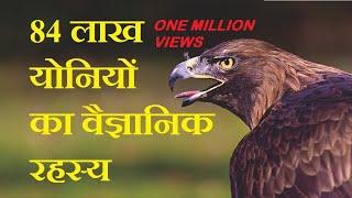84 लाख योनियों का वैज्ञानिक रहस्य by Tech Contrive in Hindi