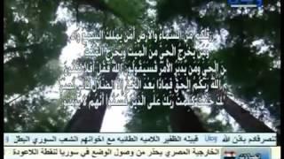 al mahdi & shia