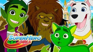 Lions and Tigers and Beast Boy, Oh My! | DC Super Hero Girls