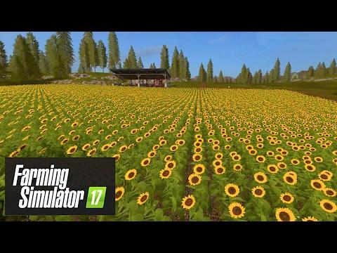 Farming Simulator 17 - Sunflower Power