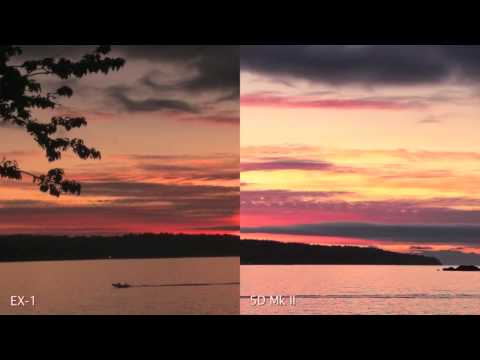 Canon 5D Mk II vs Sony PMW-EX1