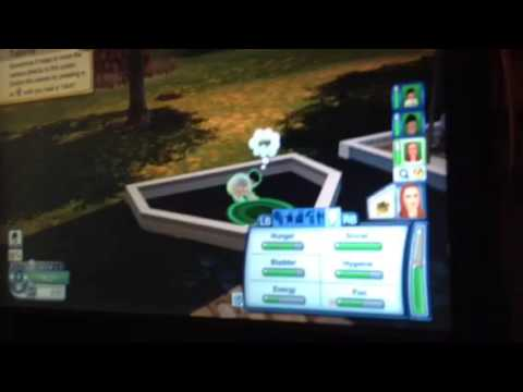 How to make a social worker come for sim- sims three pets