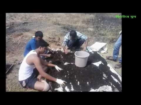 'Nirmalya Recycling Project' 'निर्माल्य पुनर्वापर प्रकल्प '