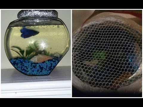 DIY | How to Make a Fish Bowl Lid Cover