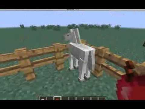 How to breed horses in minecraft 1.7.2 + More!