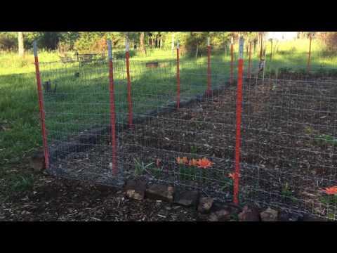 Back to Eden Garden Fence Gate