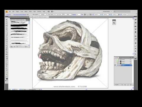 Wacom Tablet Basics - Adobe Illustrator