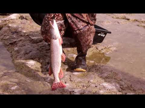 Fishing Utah Lake 18 Feb 2016