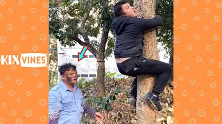 Funny videos 2020 ✦ Funny pranks try not to laugh challenge P157