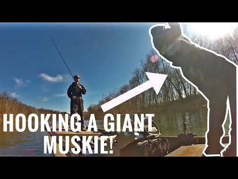 The Hunt For The Fish Of 10,000 Casts - Hooking A Giant MUSKIE & A Quick Chaos Tackle Medussa Tip!