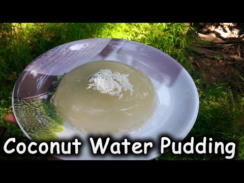 COCONUT WATER PUDDING RECIPES / PUDDING RECIPES
