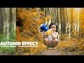 Photoshop Tutorial Autumn Effect | soft color