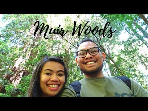 Houston to SF Bay Area| Walking through Muir Woods national monument|