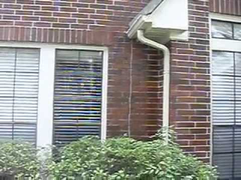 Remove Mold Mildew from Brick   YouTube