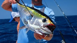 Download CAUGHT Our Own SUSHI! Catch Clean Cook- DEEP SEA Tuna (Key West) Video