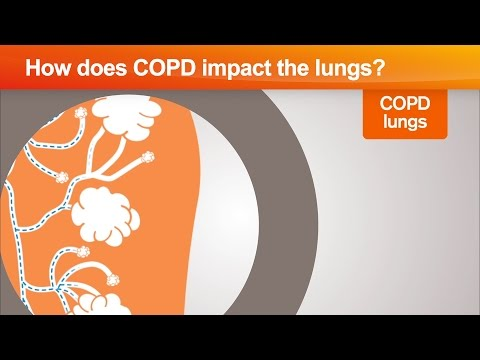 How does COPD impact the lungs?