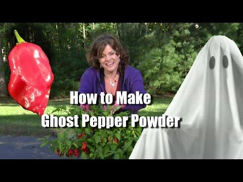 How to Make Ghost Pepper Powder (Bhut Jolakia) or any Chili Pepper