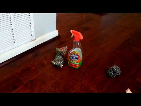 How To Clean Rental Homes -  House Cleaning Tips for Vents!- test for scratching