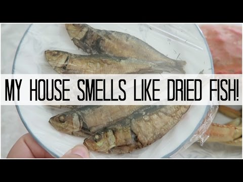 MY HOUSE SMELLS LIKE DRIED FISH! - April 28, 2016
