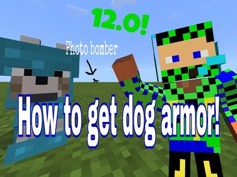 How to get armor on your wolf/ocelot! MCPE-addon needed