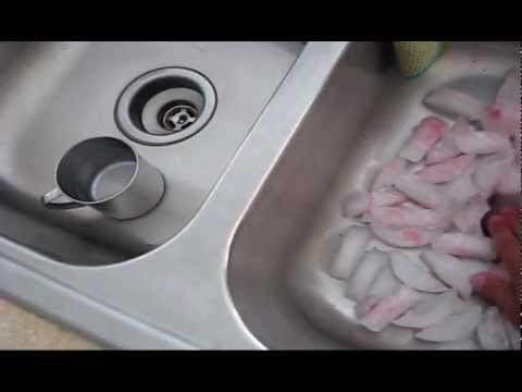 Cleaning a Garbage Disposal with ice cubes and rock salt