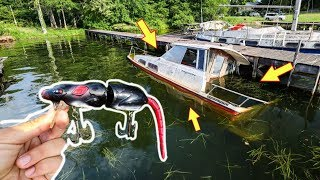 I Tried To Catch Fish Out Of This Sunken Boat!! + ( Rat Lure Challenge)