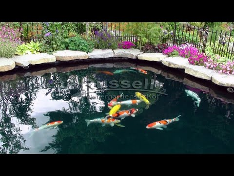 How to Build a Bubble-less Koi Pond Time Lapse (in slide-show format)
