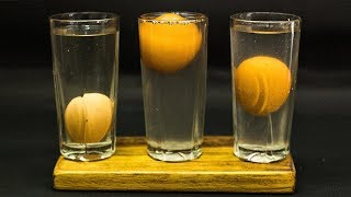 Download 5th Grade Science Projects Floating Egg Video