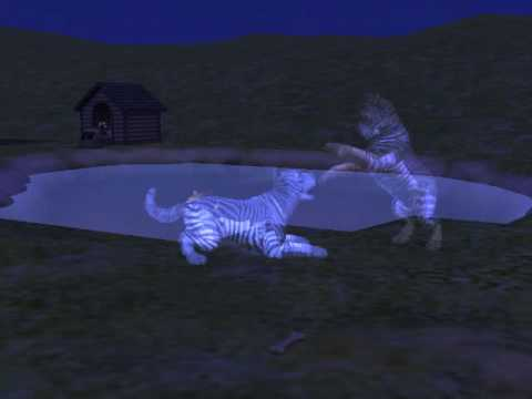 Sims 2 pet ghosts playing by the lake