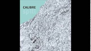 Calibre  Think On