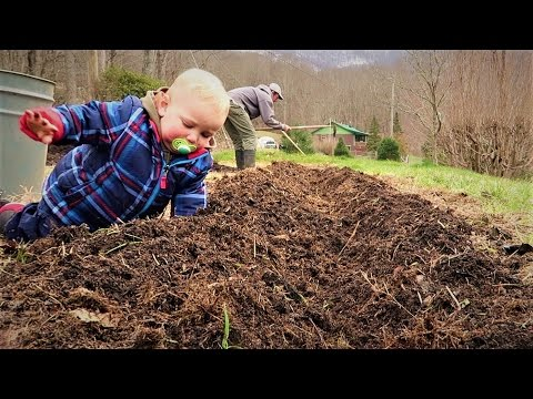 Our Baby Helps Plant An Asparagus Bed
