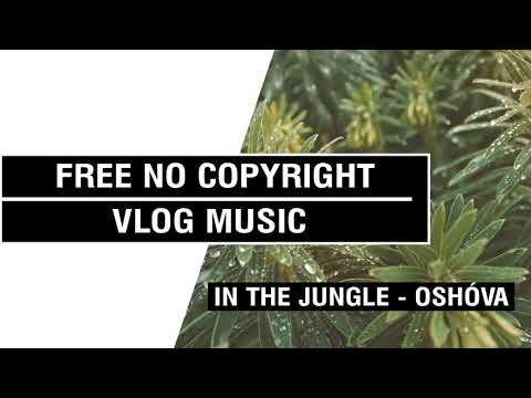In The Jungle ( Tropical House ) - Oshóva  [FREE No Copyright Vlog Music ]⚡🎧🔥