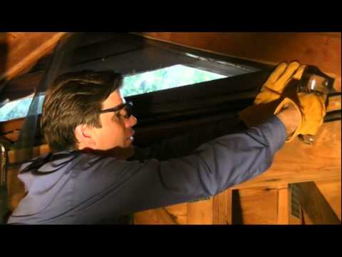 How to Prevent Pests from Entering Your Attic