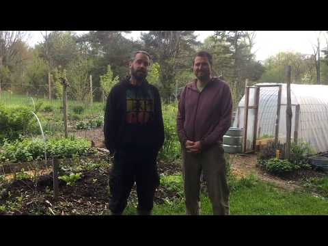 Growing a Woodland Farm and Homestead - Summer Course!
