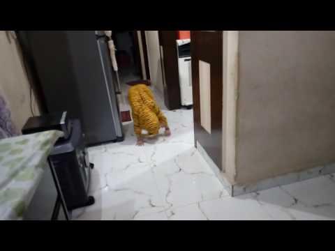 Fancy dress competition rudraksh as tiger