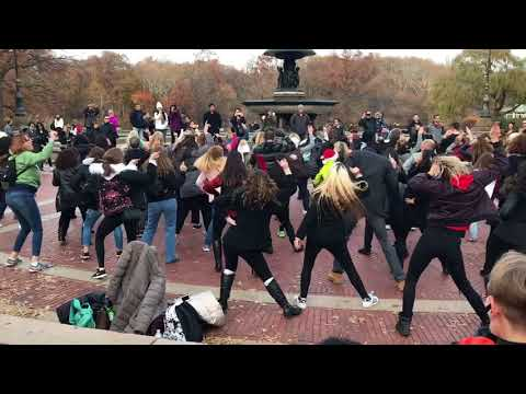 Flash Mob marriage proposal Dec 2 2017 NYC Central Park
