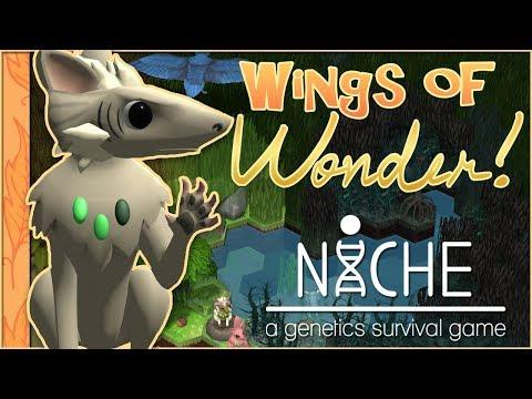 A Series of Misadventures!! 🐦Niche: Wings of Wonder • #3