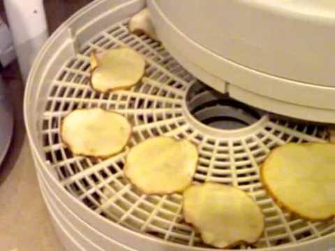 Sucessful Potato Dehydration