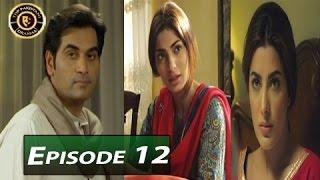 Dil Lagi Episode 12 - ARY Digital - Top Pakistani Dramas
