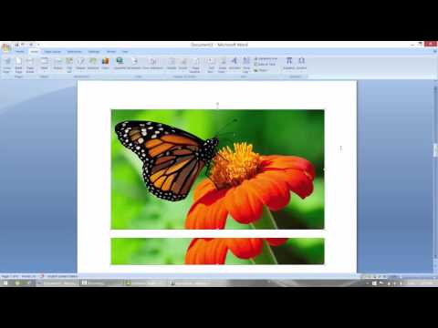How to Insert Picture, Clipart, Word Art, Hyperlink, Header and Footer in MS Word