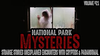 Strange Stories and Unexplained Encounters with Cryptids and the Paranormal   Volume #21