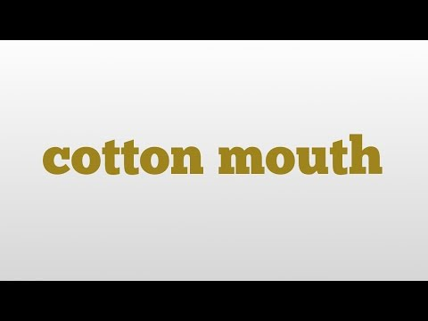 cotton mouth meaning and pronunciation