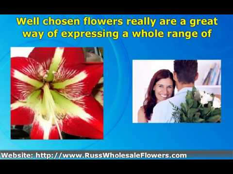 Buy flowers online and save money