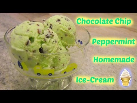 Chocolate Chip Peppermint Homemade Ice-Cream by Jamie Hoo
